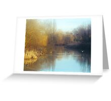 Serenity, Hayes Hill Farm, Essex Greeting Card