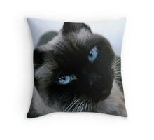 Rolly Throw Pillow