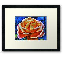 HDR flower Framed Print