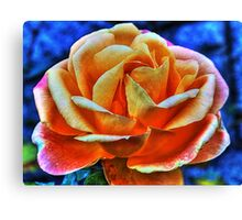 HDR flower Canvas Print
