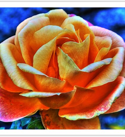 HDR flower Sticker