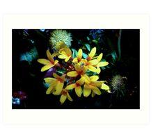 Flower Collage Art Print