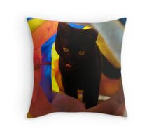 Kitty Play Throw Pillow