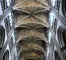 The Cathedral at Rouen (1) by Larry Lingard-Davis