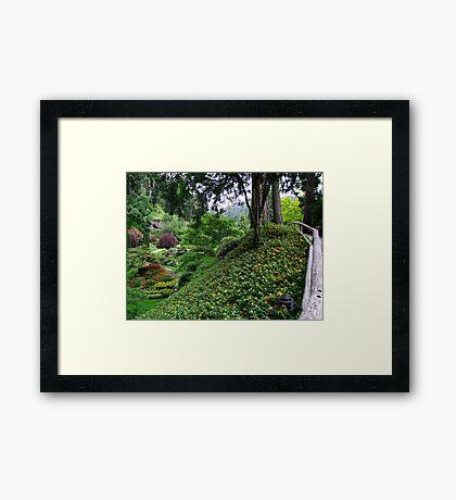 Sunken Garden No.4 Framed Print