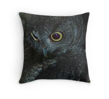081409-30 Throw Pillow