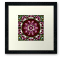 Rose Madder Flower Kaleidoscope 120 Framed Print