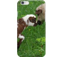 Cute Brown and White Lamb with Ewe iPhone Case/Skin
