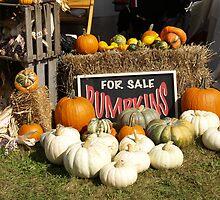 Pumpkins For Sale by JEOtterbacher