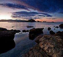 Taputeranga Island Dawn by Ken Wright