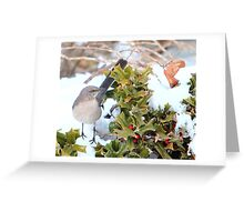 Mockingbird and Holly Greeting Card