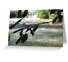 Antietem Creek Greeting Card