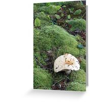 'Shroom Study No.1 Greeting Card