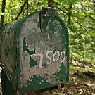 7500  by Lynne Prestebak