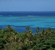 Fijian Colours by Kimberley Gifford