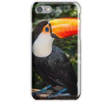 Toucan No. 2 of Iguazu iPhone Case/Skin