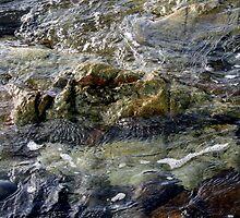 Water by Jodie Bennett