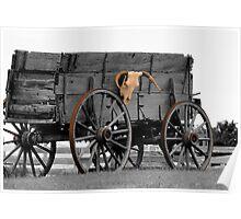 Skull Wagon Poster
