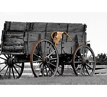 Skull Wagon Photographic Print