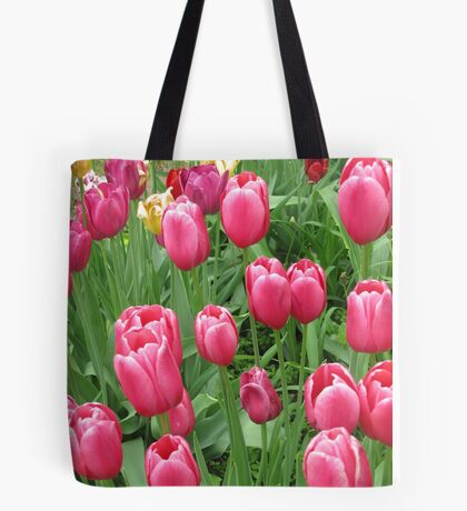 Early Spring Colorful Tulips photograph  Tote Bag