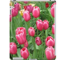 Early Spring Colorful Tulips photograph  iPad Case/Skin