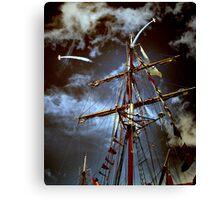 Tall Ships & silver birds (2) Canvas Print