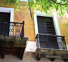 Spanish Doors by Haydee  Yordan