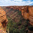 Kings Canyon by Steven Pearce