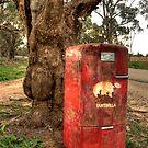Mailbox # 1 by GailD