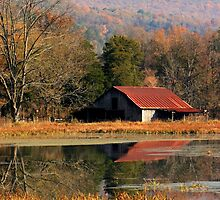 Autumn Reflections by Lisa G. Putman