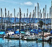 Berkeley Marina by Bob Wall