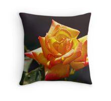Tinta Rosa Throw Pillow