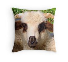 Sheep Portrait Close Up Throw Pillow