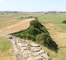 Hadrian's Wall by prestongeorge