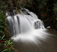 Lilydale Falls (high shot) by Husky