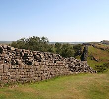 Hadrian's Wall. by prestongeorge
