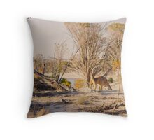 A bit of jiggery pokery while two kangaroos looked on Throw Pillow