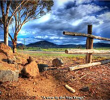 A  view to the You Yangs by Garry Quince
