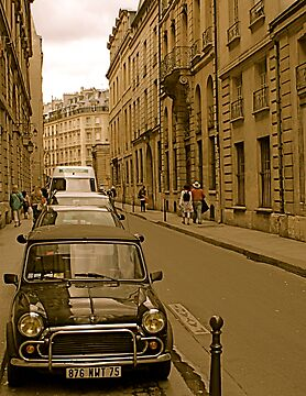 Paris Mini by Louise Fahy