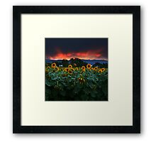Sunsets Storms and Sunflowers Framed Print