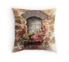 A Window from Civita, Tuscany, Italy Throw Pillow