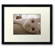 Mia Brown Framed Print