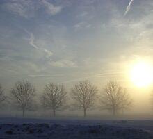 Wintery Fog by ccmerino