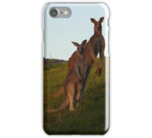 Roo Family iPhone Case/Skin