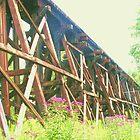 Railroad Trestle by Jim DeMore