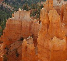 Bryce Canyon by AnaBrun