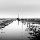Road to Lonely by Gregory Collins
