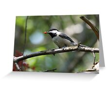 Rudolph the Black-Capped Chickadee (Frame 1) Greeting Card