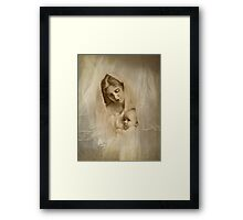 A Mother's Love Framed Print