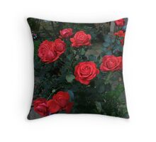 A Dozen Red Roses  Throw Pillow